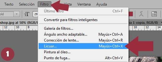 Photoshop Menú - Filtros - Licuar