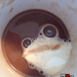 A veces veo ranas en el café…