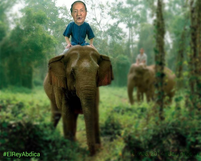 el rey abdica - que hara ahora el rey - elefantespng