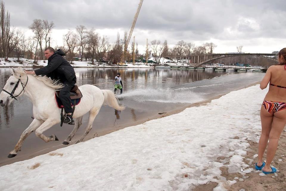 caballo a propulsion