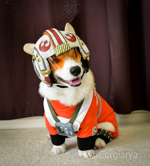 x-wing-star-wars-corgi-01