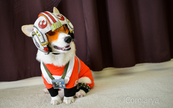 x-wing-star-wars-corgi-02
