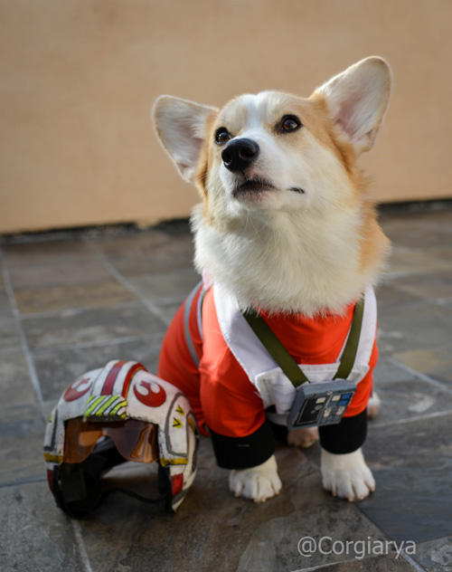 x-wing-star-wars-corgi-03