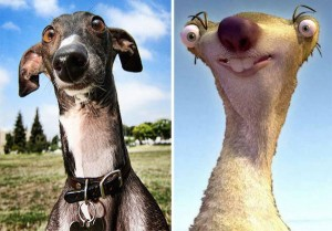 cartoon-characters-found-in-real-life-3