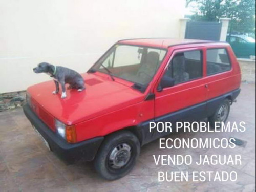 por problemas economicos vendo Jaguar en buen estado