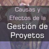 Causas y Efectos de la Gestión de Proyectos