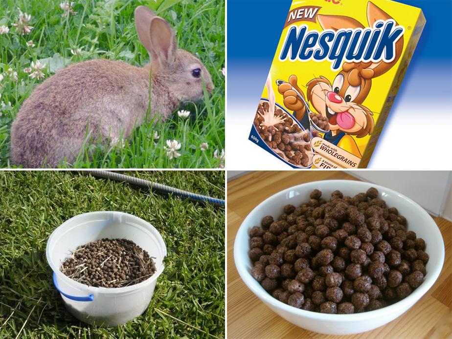 Nesquik y mierda de conejo