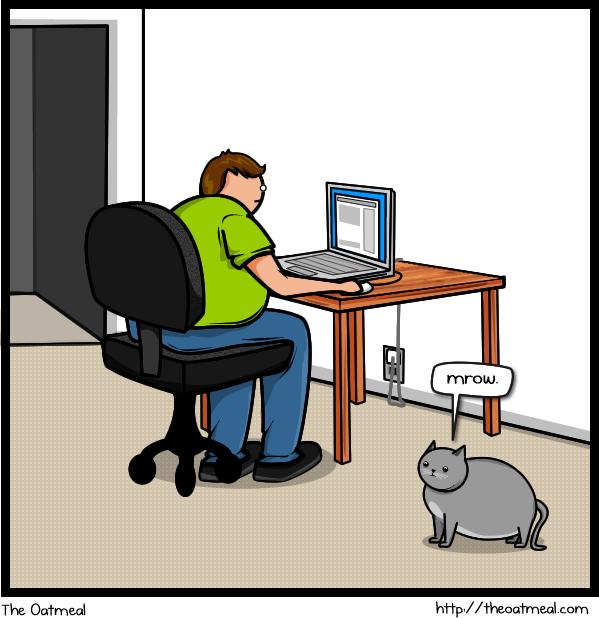 Qué puede hacer tu gato por llamar tu atención