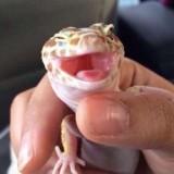 ¡Sonríe, que es viernes! #TGIF